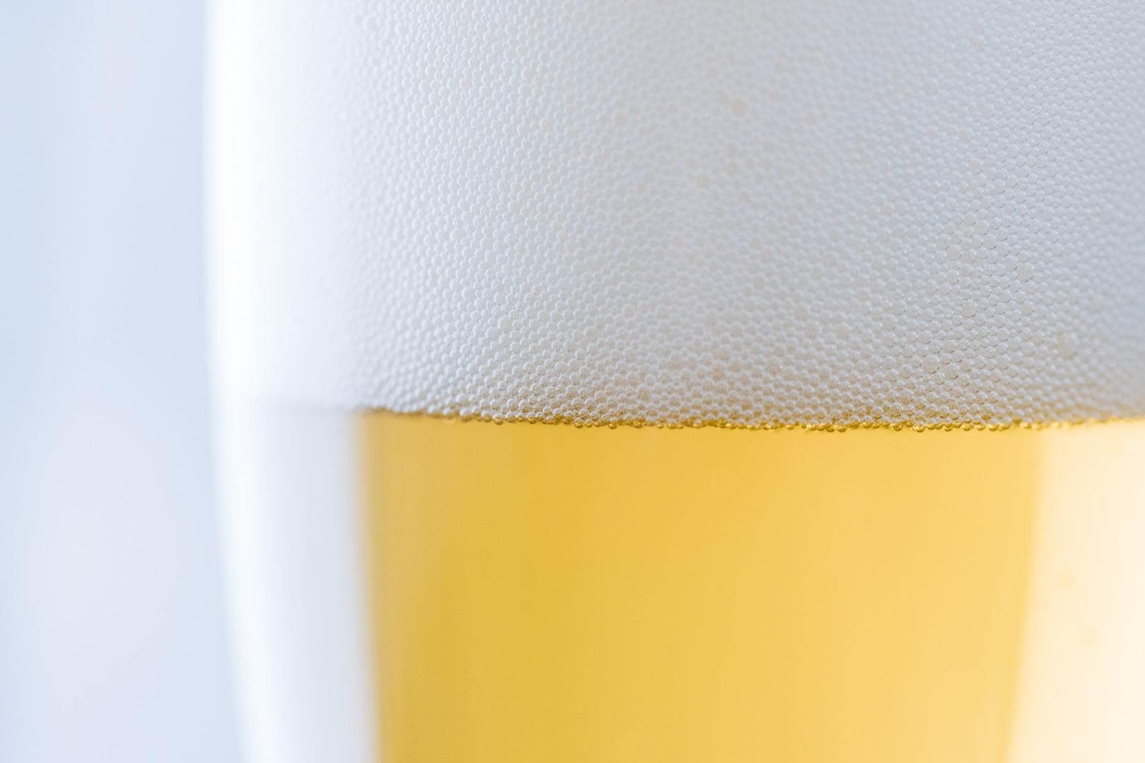 american wheat beer head